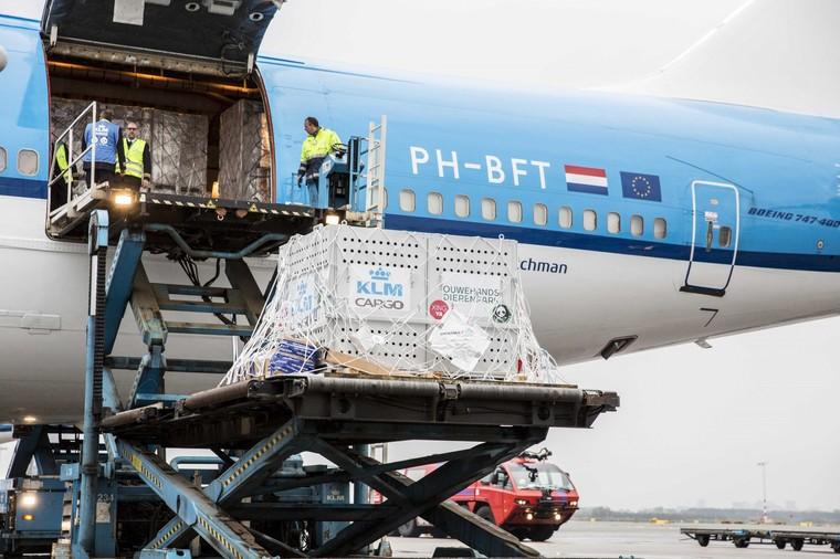 Boeing 747 Combi da KLM
